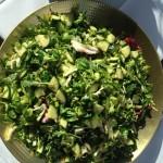 Spring Green Leaf Salad